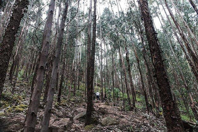 blog de trekking y senderismo