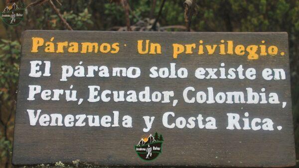 paramo-trekking en colombia-pnn chingaza-parque chingaza-senderismo chingaza
