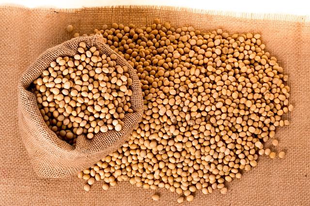 granos para sampa