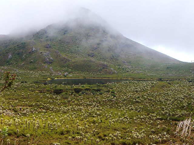 Trekking en Colombia - PNN Chingaza -