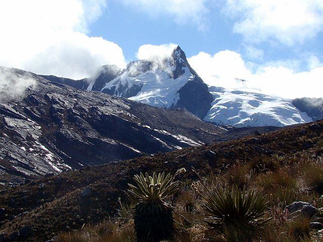 Trekking en Colombia - PNN el Cocuy - Frailejón