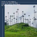 Tour A Colombia – Viaje En Grupo Por Los Mejores Destinos En Colombia -Valle del Cocora