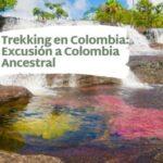 Trekking en Colombia-Excusión a Colombia Ancestral-caño cristales