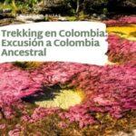 Trekking en Colombia-Excusión a Colombia Ancestral-caño cristales la macarena