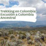 Trekking en Colombia-Excusión a Colombia Ancestral-Chingaza
