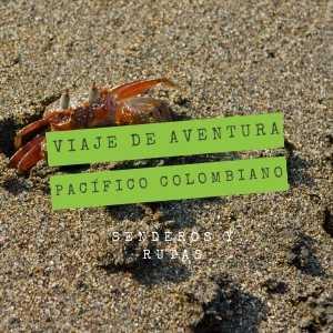 viaje-de-aventura-pacifico-colombiano-cangrejo